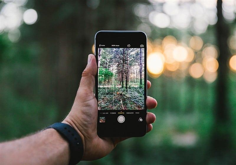 mão segurando celular enquanto tira foto de floresta