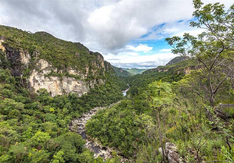 vista aérea da chapada dos veadeiros com florestas e rio passando no centro