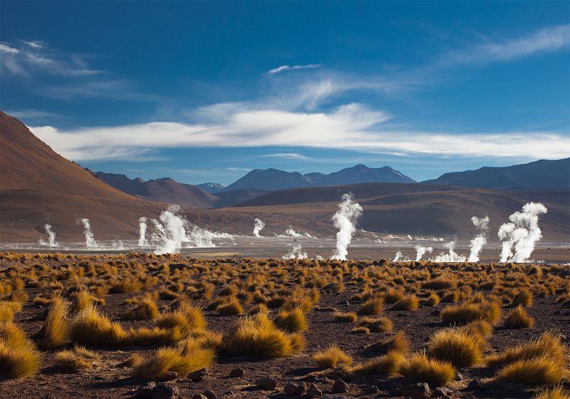 vegetação com fumarolas de vapor ao fundo no deserto atacama