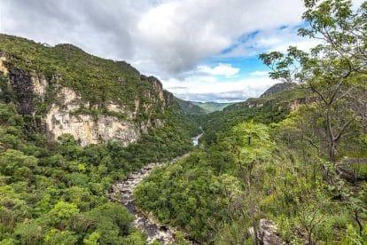 vista aerea da chapada dos veadeiros com florestas e rio passando no centro